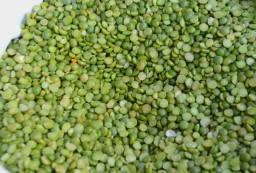 Φάβα Πράσινη Κορινθίας