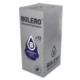 Elderberry / Σαμπούκος Bolero Χυμός σε Σκόνη για 1,5lt